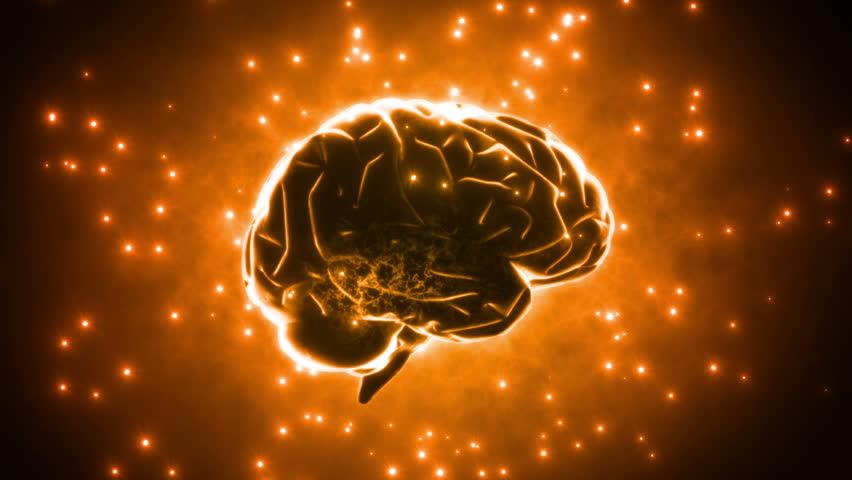 Brain images.   Shutterstock HD Video #3785507