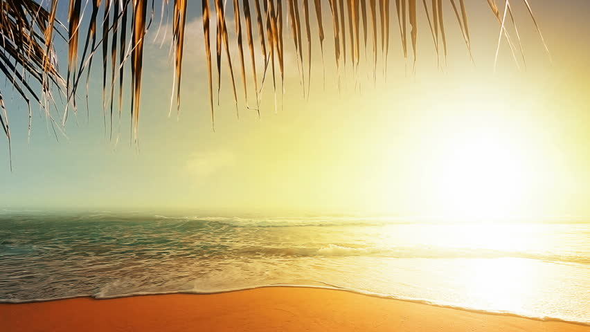 Amazing sunset over the tropical beach   Shutterstock HD Video #3805313