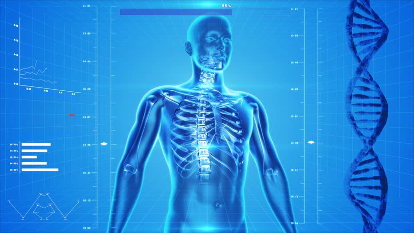 Analysis of human body, skin and skeleton, like x-ray, spinning in 360 degrees on white background. Great to be used in medicine works and health.