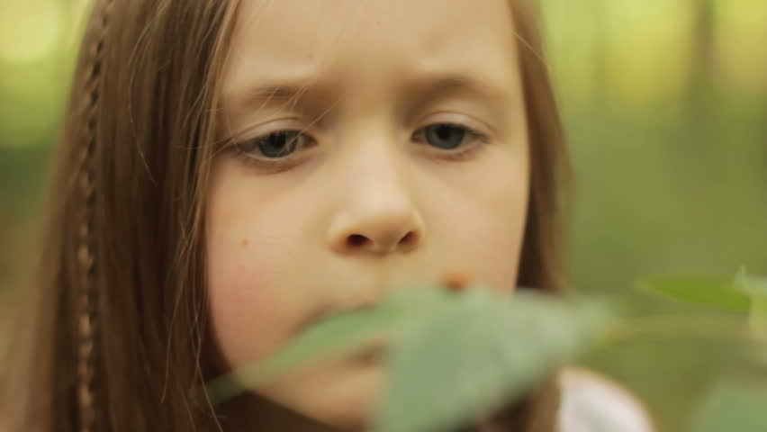 Nature explorer - a child watching a ladybird with a magnifying glass