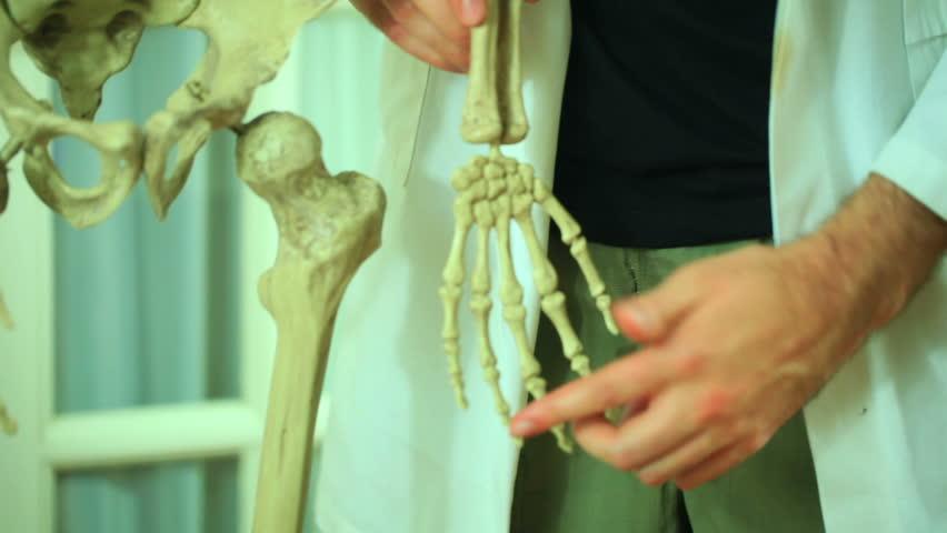 Doctor looking at hand bones | Shutterstock HD Video #3883679