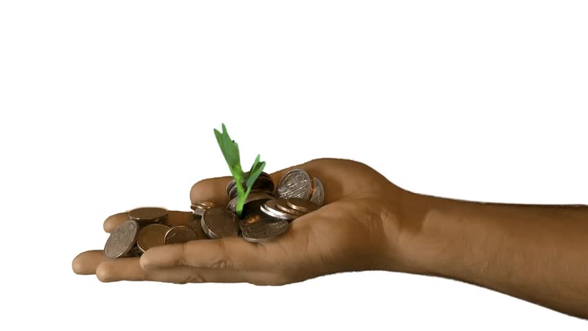 A seedling growing from a hand with money/coins  #3897431