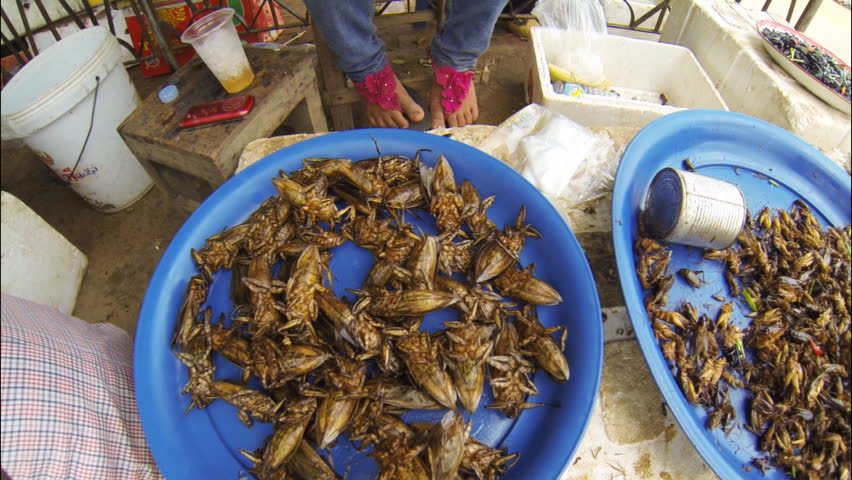 SIEM REAP, CAMBODIA - MAY 17: Fried insects for sale close to West Baray  in Siem Reap Cambodia on May 17th 2013