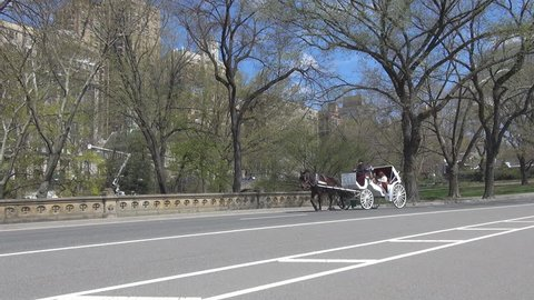 NEW YORK, APRIL 21, 2013, Beautiful carriage in Central Park by day