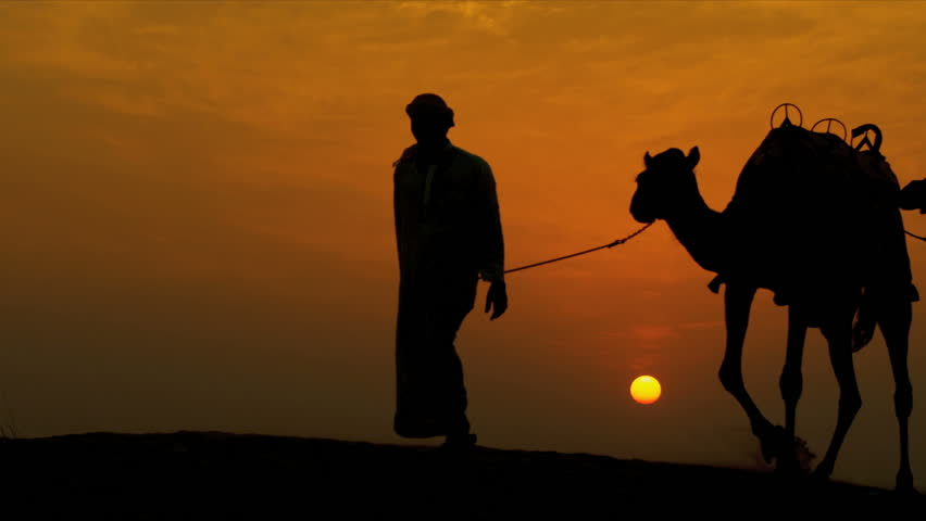 Middle eastern male leading his camels through desert sunset silhouette shot on RED EPIC