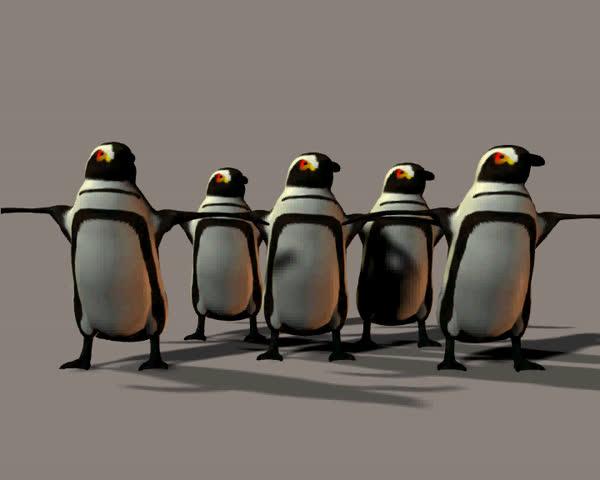 A chorus line of dancing penguins