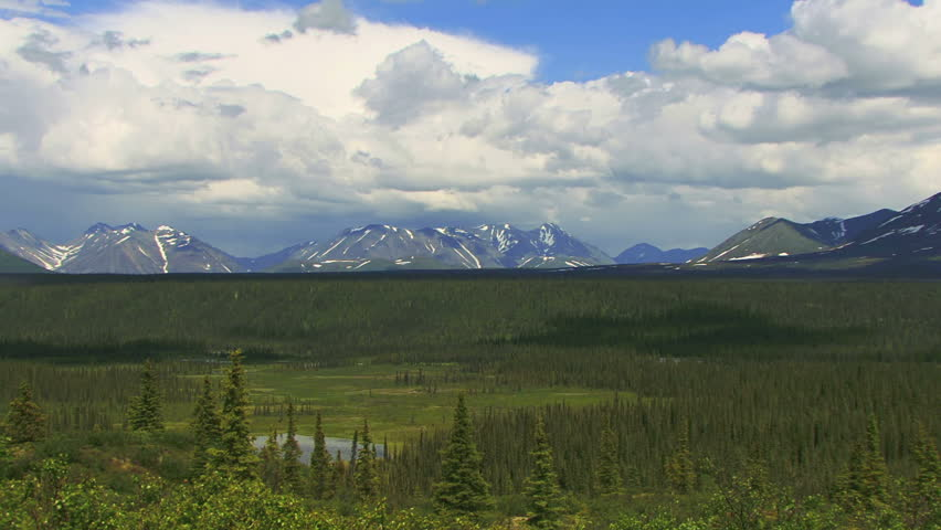 Timelapse shot of spruce forest and lake with mountains seen from an overlook off the Denali Highway, Alaska