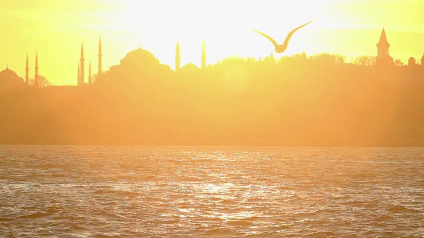 Seagull flying slow motion. Istanbul, Sarayburnu. In the distance are such landmarks as Blue Mosque, Hagia Sophia and Topkapi Palace.