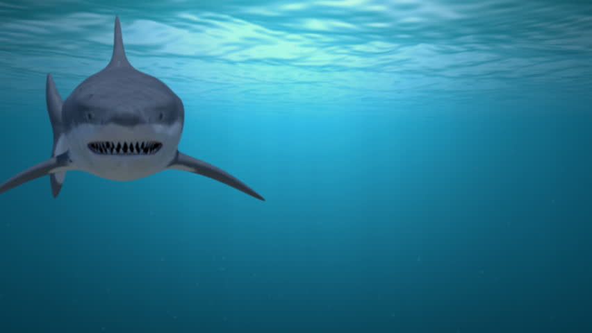 A Great white shark attacks the camera. High quality animation created in Maya.