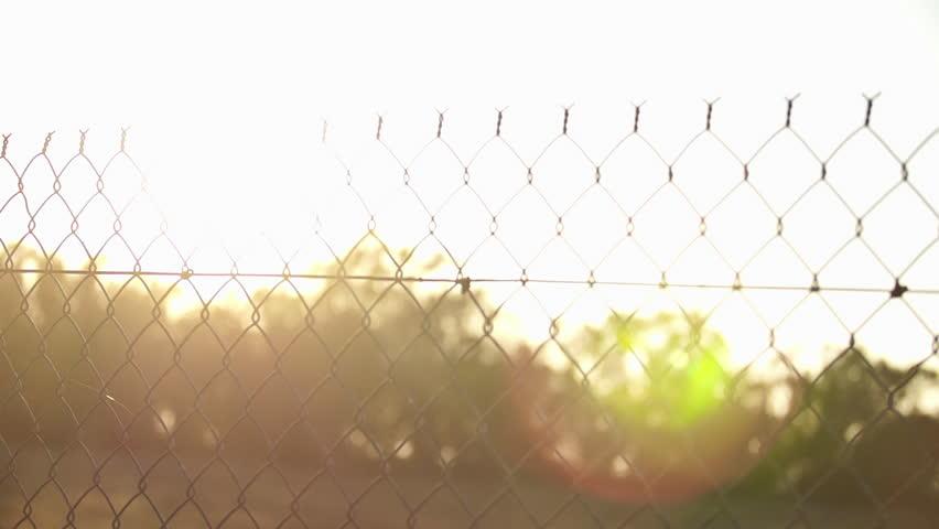 Sun Rays Shining Through Fence Pan