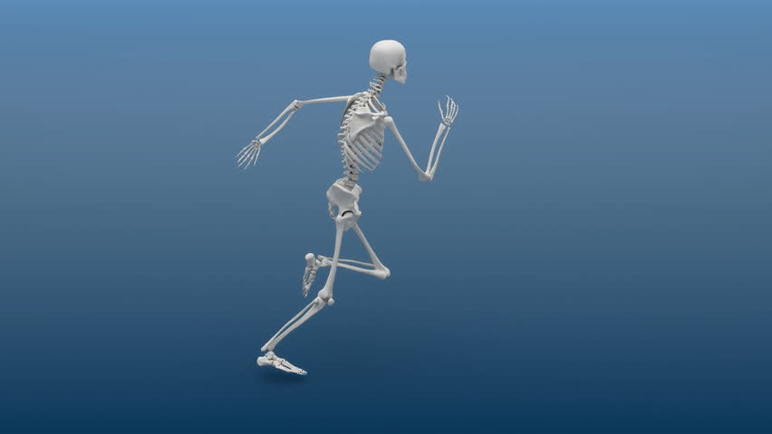 Slow motion animation of a running human skeleton. HD 1080p loop.