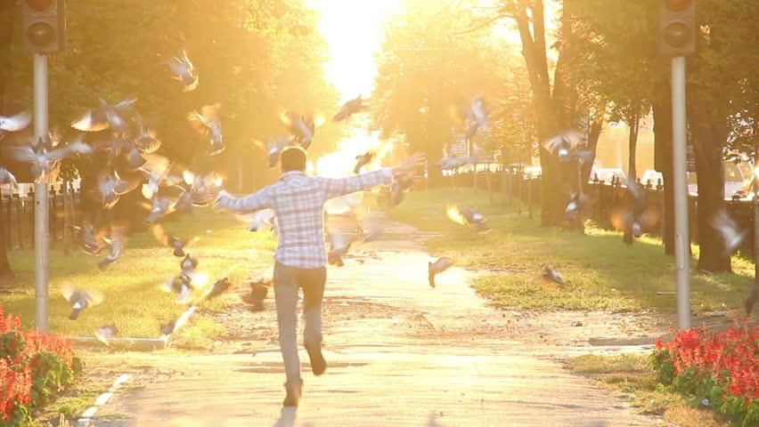 Crazy happiness running scaring birds hopping enjoying sunlight #4572695