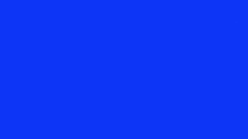 Cat on bluescreen. Pack of 4. Going from side to side and stationary. Sgot with red camera #4626260