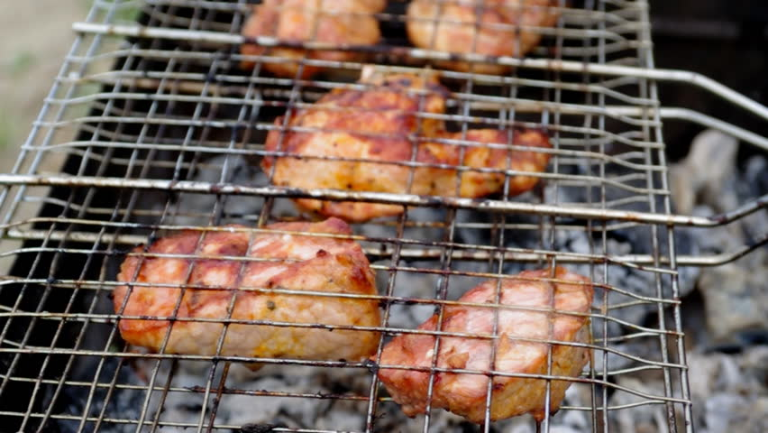 Summer barbecue concept. Close up with shallow DOF. | Shutterstock HD Video #4638857
