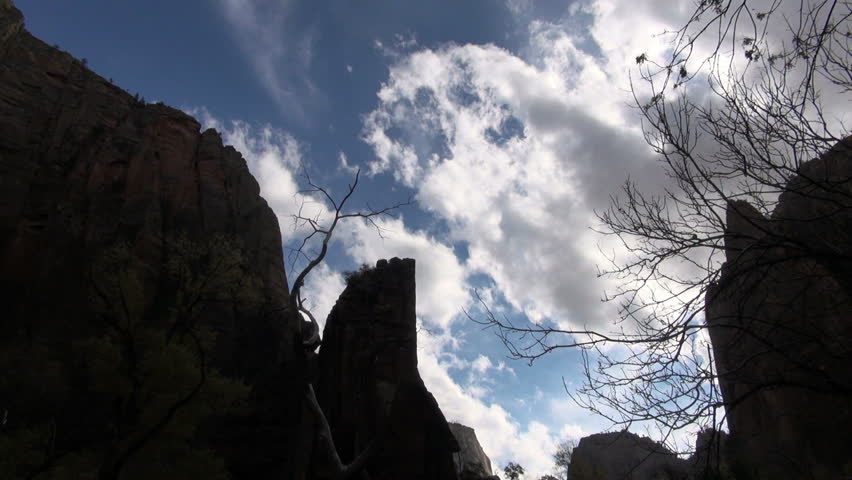 Zion winter tree and clouds timelapse | Shutterstock HD Video #4644869