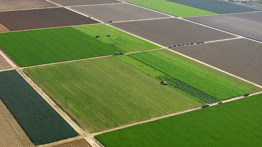 Fields with various types of agriculture, aerial shot | Shutterstock HD Video #4664192