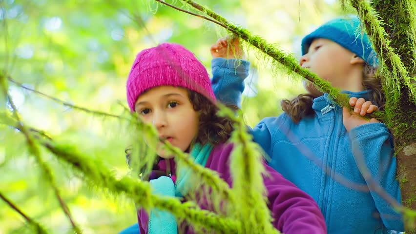 Two young girls walk through a forest and stop by a big tree and start to look around. Wide to close up shot. | Shutterstock HD Video #4679450