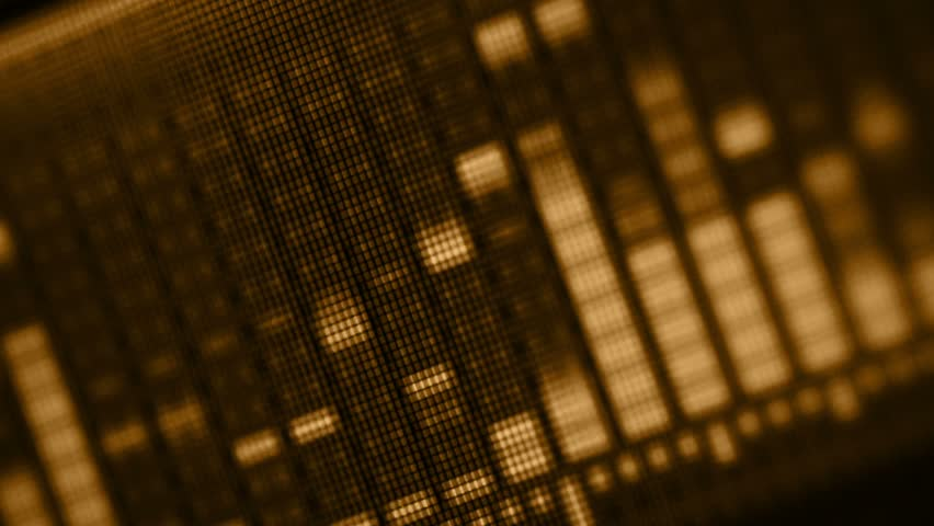 Video 1920x1080 - EQ on the LCD screen close-up in golden tones