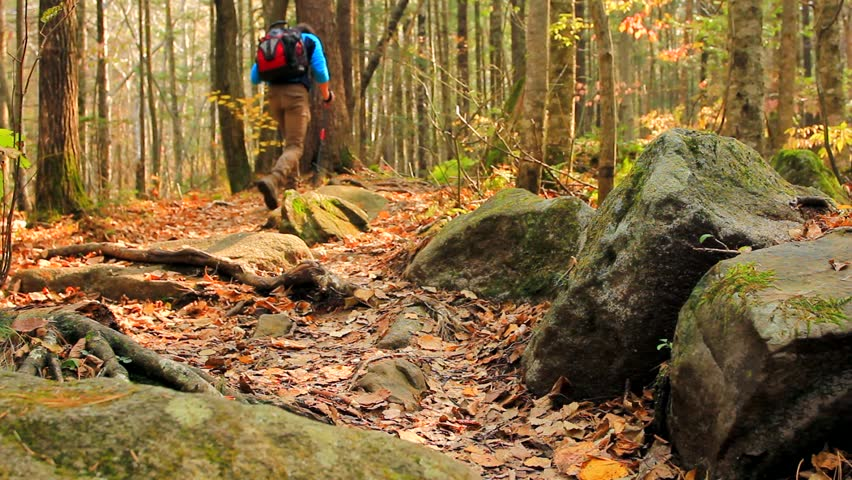 Young tourist man hikes away, through thick forest