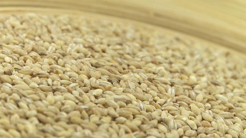 Barley mash 2 | Shutterstock HD Video #4843265