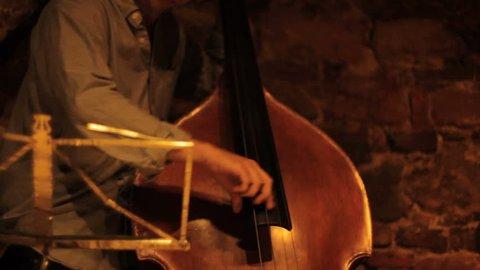 Jazz contrabass_02