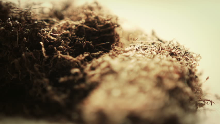 Hand Rolling Tobacco. A macro dolly shot of some hand rolling Tobacco film on the Blackmagic Cinema Camera.  | Shutterstock HD Video #5000534