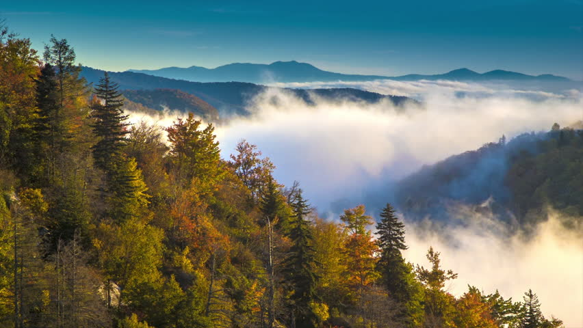 Autumn / Fall Foliage on a Hill with Fast Moving Misty Clouds during the Morning Hours over the Blue Ridge Mountains on the Parkway near Asheville, NC.