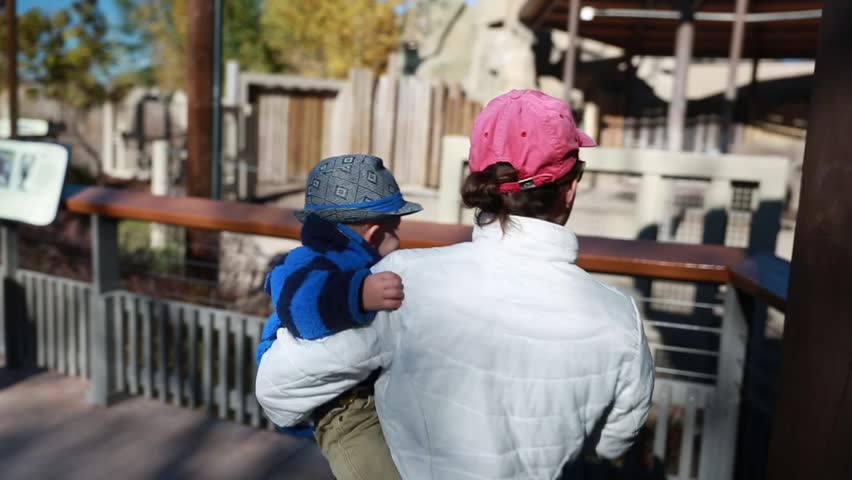 A baby boy and his mother watching the elephants at the zoo | Shutterstock HD Video #5066498