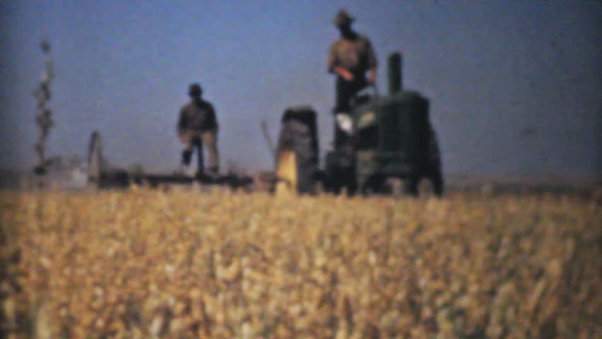 MADISON, WISCONSIN, 1940: Farmers harvesting golden ripe wheat from their fields in the fall of 1940.