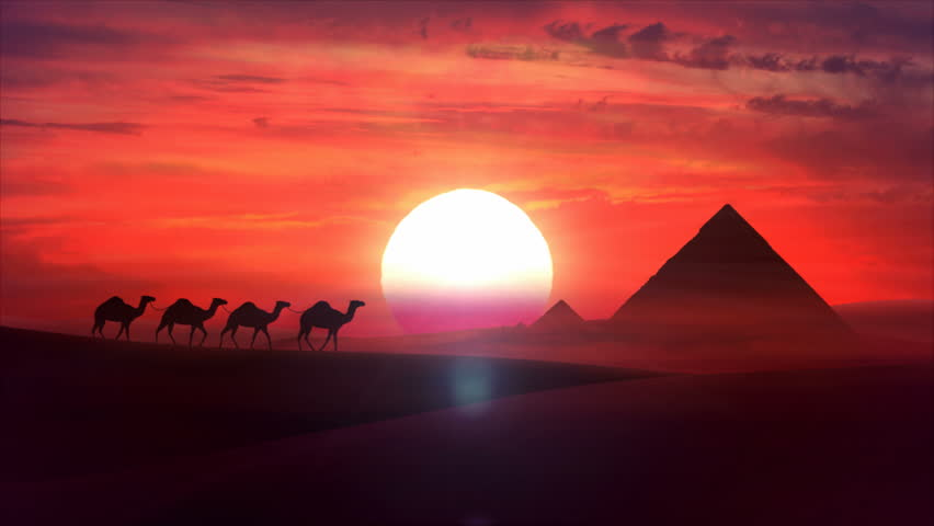 A camel train travels across a desert in the sunset. Sand dunes silhouettes, pyramides of Giza and cloudy cloud sunset in the background. Animation HD