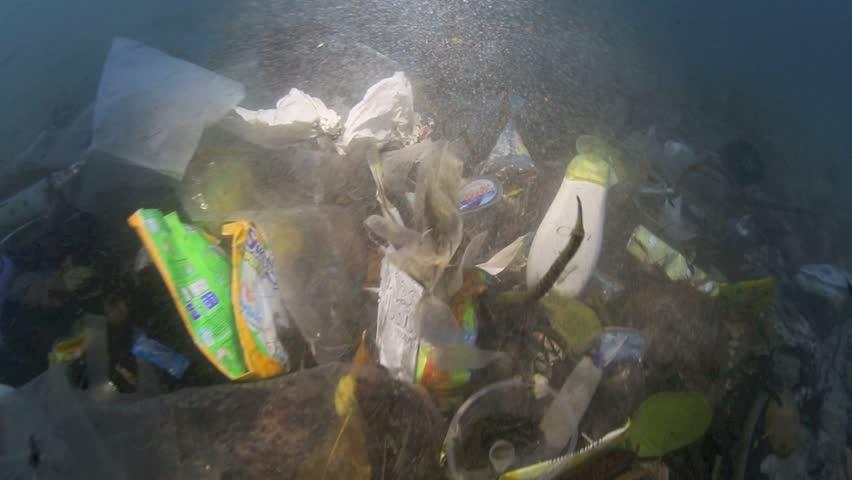 Plastic garbage and other debris underwater on a beach in Bunaken Island, Sulawesi #5402312