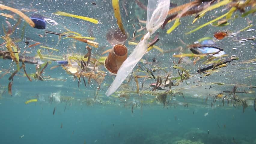 Plastic garbage and other debris floating underwater over fragile coral reef in Bunaken Island, Sulawesi #5402324