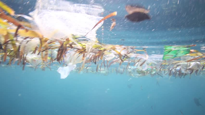 Plastic bags and other garbage floating underwater over fragile coral reef in Bunaken Island, Sulawesi #5408330