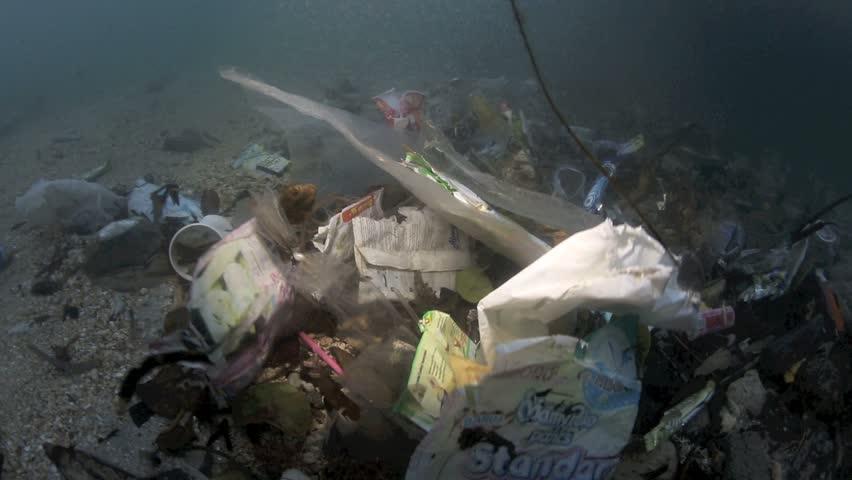 Plastic garbage and other debris floating in the tide mark underwater in Bunaken Island, Sulawesi #5408732