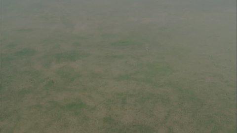 Grasslands Plain Prairie. Aerial overview of grasslands