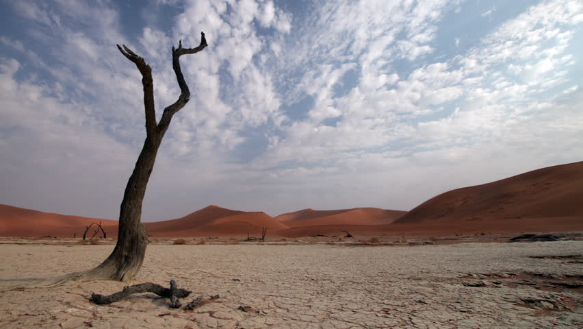 Cloud time lapse over parched tree in the dried up lake at Dead Vlei in Namibia.