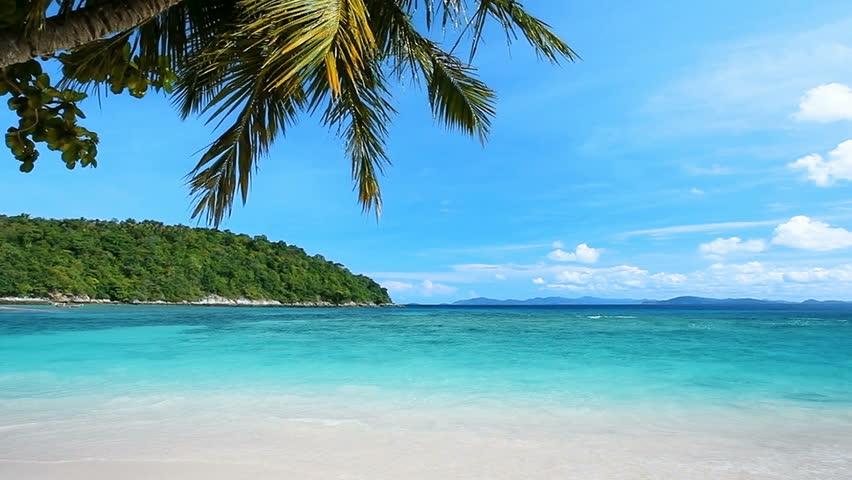 Peaceful tropical beach   Shutterstock HD Video #5515157