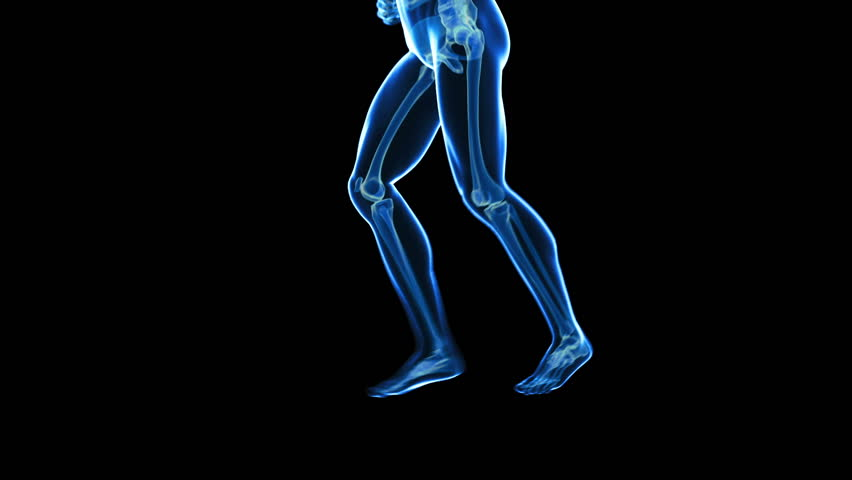 x-ray style - medical 3d animation of a running male - scan effect on the skeleton