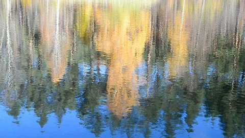 autumn daylight landscape reflected in water