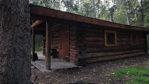 Nature Campsite Trees Cabin. Large one story log cabin in the middle of lush green forrest surrounded by Pine trees.