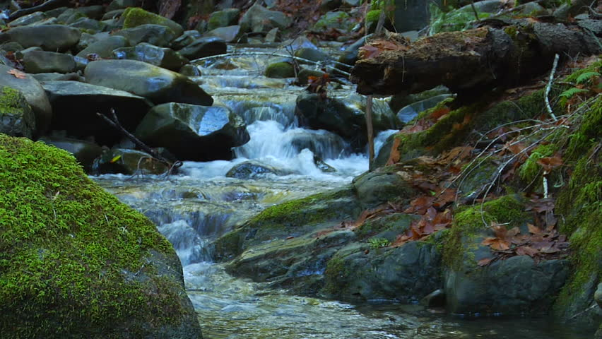 A peaceful babbling brook in the forest will bring inner peace to anyone lucky enough to have a few minutes to sit by one.