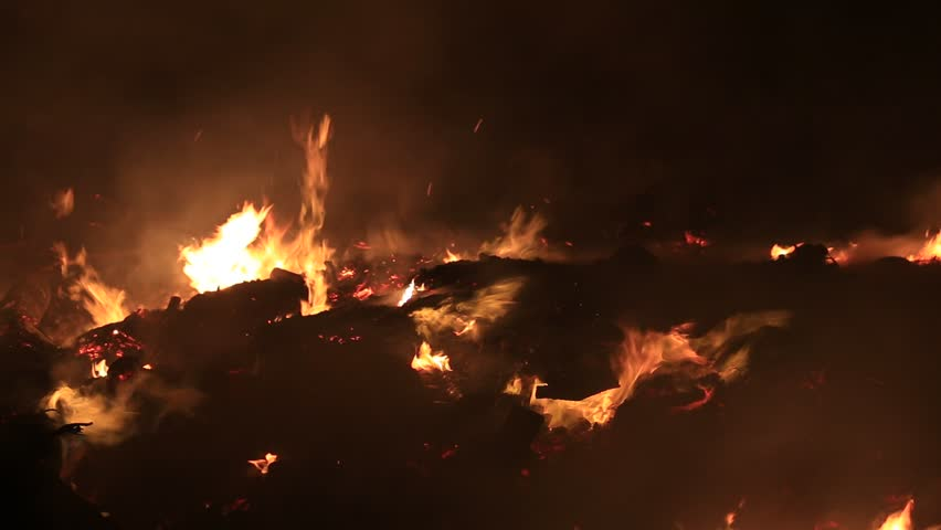 Bonfire burning trees at night. Bonfire burning brightly, heat, light,camping, big bonfire | Shutterstock HD Video #6144386