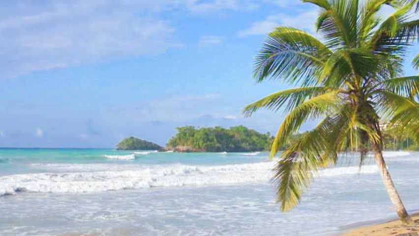 Natural caribbean beach   Shutterstock HD Video #6247499