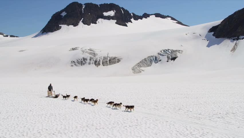 Aerial view team of Alaskan Husky dogsledding, USA - Aerial view of husky dog team traversing snow covered high mountain plateau, Alaska, USA, RED EPIC