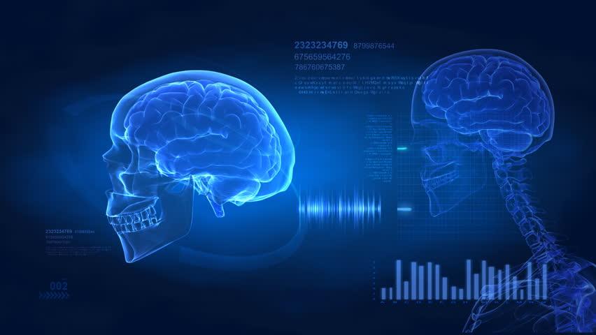Brain concept -  medical science display in loop Royalty-Free Stock Footage #638125