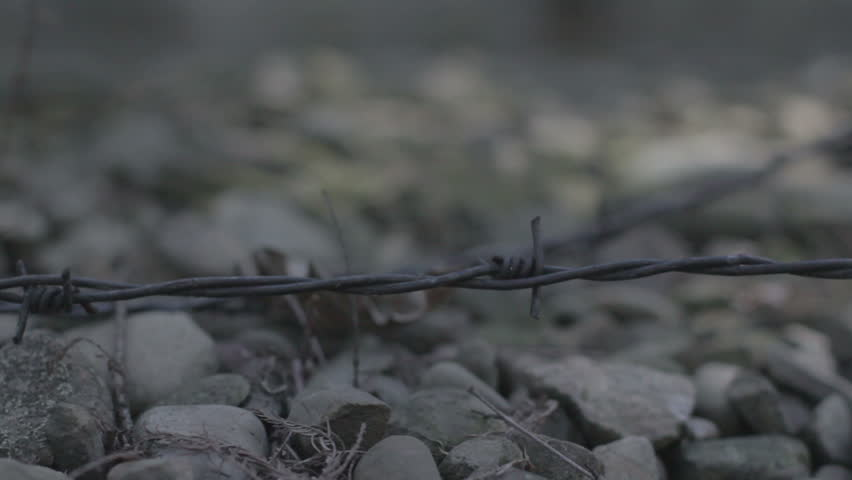 AUSCHWITZ, POLAND - CIRCA 2010 - Concentration Camp in Poland. Dolly shot. Shot in Cinestyle color profile (good for color grading).