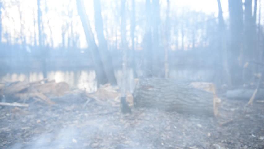 Campfire near the lake   Shutterstock HD Video #6729028