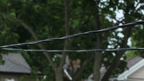 Suburban wires after the rain. Residential electrical wires with trees and rooftops in the background. Water drops dripping. Shallow depth of field. East York, Ontario, Canada.