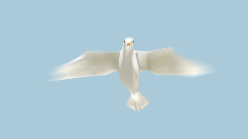 Fun CG Bird Flying Down Towards Camera with Alpha Matte.