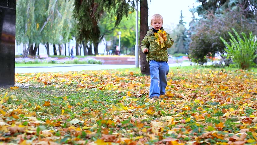 boy is playing with autumn leaves. child walking outdoors in autumn urban park. kid holding in hand bouquet of autumn leaves. sequence.  #7299427